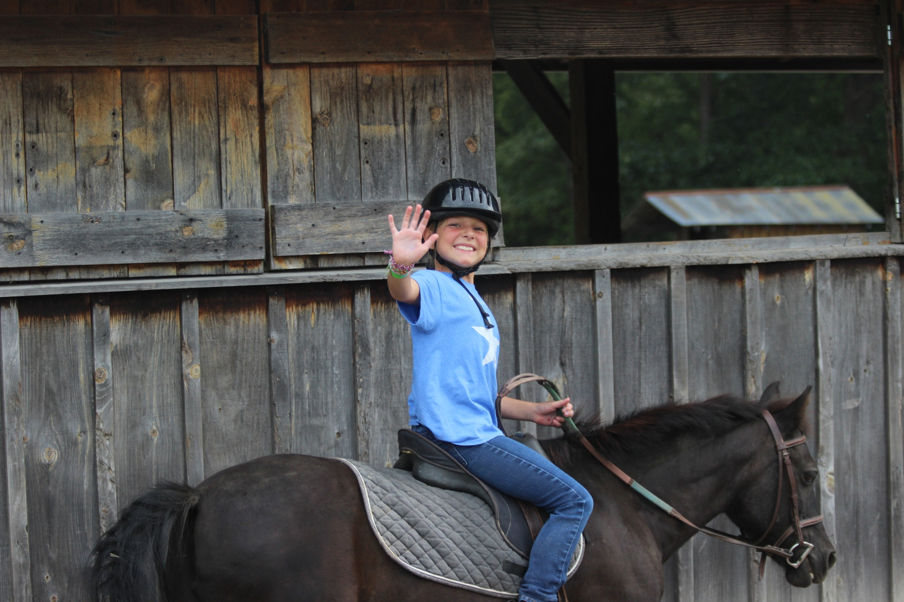 Horseback add-ons!